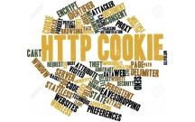 Bạn đã hiểu rõ về HTTP Cookie?