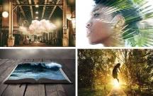 15 Theme WordPress đa năng cho người thiết kế web