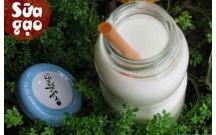Tự làm sữa gạo Hàn Quốc