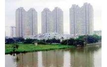 Đô thị hóa và mối quan hệ giữa Thành phố và Môi trường