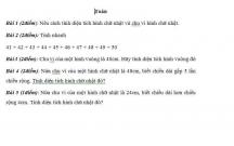 Bài tập ôn tập cuối tuần lớp 3:  Tuần 29