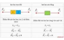 Câu hỏi và bài tập vận dụng Vật Lý lớp 10: Ba định luật Newton