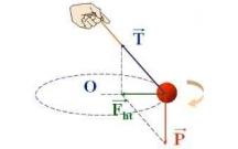 Tổng hợp câu hỏi trắc nghiệm và bài tập vận dụng Vật lý 10 chuyên đề Lực ma sát, lực hướng tâm