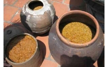 Đánh giá thực trạng phát triển làng nghề tương Bần, và đề ra những giải pháp nhằm bảo tồn và phát triển làng nghề tương Bần